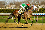 APR 03, 2021 :  Mischevious Alex with Irad Ortiz Jr. aboard, wins the Grade 1 Carter Handicap, for 4- year olds & up, going 7 furlongs, at Aqueduct Racetrack, Ozone Park, NY. Dan Heary-Eclipse Sportswire-CSM