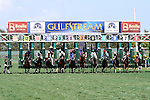 Scenes from Gulfstream Park. Race 1. Hallandale Beach, Florida 02-22-2014