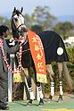 Horse Racing: Sports Nippon Sho Kyoto Kimpai