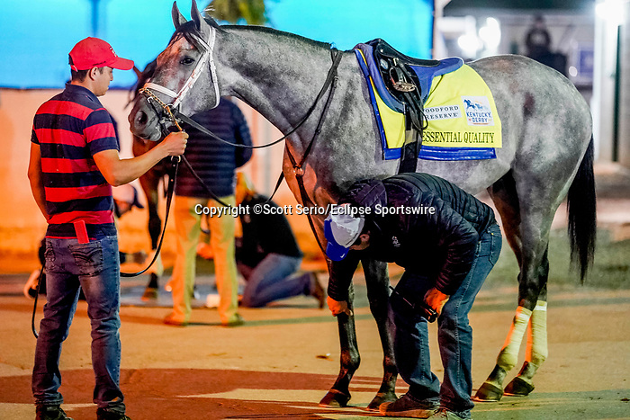 April 24, 2021: Trainer Brad Cox examines the legs of Essential Quality, after his workout for the Kentucky Derby at Churchill Downs in Louisville, Kentucky. (Scott Serio/Eclipse Sportswire/CSM)