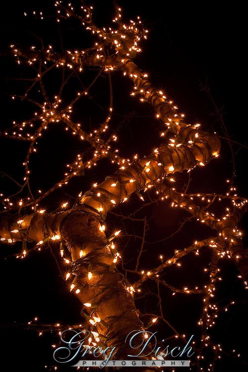 Garden Of Lights Muskogee Oklahoma081228 Mg 4380 Jpg Greg Disch Photography