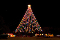 The Zilker Tree Stands 155 feet tall and is composed of 39 streamers, each holding 81 multicolored, 25 watt bulbs, totaling 3,309 lights. At the top of the tree, a double star measures 10 feet from point to point. The double star displays 150 frosted bulbs.The Zilker Tree was initiated in 1965 by Mrs. Alden (Mabel)Davis, civic leader and chairperson for the City's Special Holiday Activities Committee. The tree was designed by City of Austin electricians Odie Bull, D.J. Kozlowski, Fred Scantlen and Merle Wheeler. On December 10, 1967, the first tree was lighted by Mayor Pro Tem Mrs. Emma Long...Austin was one of the first American cities to employ the modern street lighting innovation to create the Zilker Tree. Austin ran its new illumination system with power from its new City of Austin-owned electric utility. Most noted for their soft moonbeam effect, the tower lights were so effective that citizens were even able to read a wristwatch as far as 1,500 feet from the structures.Today, 17 of Austin's original 31 Moonlight Towers remain standing as present-day reminders of our city's first illumination system. Austin is the only city in the world where origins of a tower lighting system can still be found. They are listed in the National Register of Historic Places, have been designated Historic Landmarks by the State of Texas, and have been zoned historic by the City of Austin.Perhaps the most notable of these Austin structures is the replica Moonlight Tower which becomes the Zilker Tree. Moonlight Towers debuted in Austin over a century ago. In 1894, Austinites chose a forward-thinking approach to large scale community lighting by hiring Fort Wayne Electric Company of Indiana to provide and install a downtown system of carbon arc lamps situated atop 150 feet wrought iron poles in clusters of six.