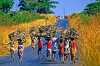 Pessoas transportam de lenha no interior de Angola. 1991. Foto de Ricardo Azoury.