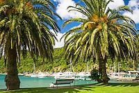 Picton Harbour - Marlborough, New Zealand