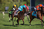 ARLINGTON HEIGHTS,IL-AUGUST 13: Noble Beauty,ridden by Florent Geroux,wins the Pucker Up Stakes at Arlington International Race Track on August 13,2016 in Arlington Heights,Illinois (Photo by Kaz Ishida/Eclipse Sportswire/Getty Images)