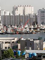 Fischereihafen in Busan, Gyeongsangnam-do, Südkorea, Asien<br /> fishing harbor  in  Busan,  province Gyeongsangnam-do, South Korea, Asia