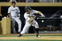 Jake Mueller (6) of the Wake Forest Demon Deacons lays down a sacrifice bunt during the game against the West Virginia Mountaineers in Game Four of the Winston-Salem Regional in the 2017 College World Series at David F. Couch Ballpark on June 3, 2017 in Winston-Salem, North Carolina.  The Demon Deacons walked-off the Mountaineers 4-3.  (Brian Westerholt/Four Seam Images)