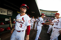 James Ramsey (3) of the Springfield Cardinals looks out to the field prior to a game against the Northwest Arkansas Naturals at Hammons Field on August 23, 2013 in Springfield, Missouri. (David Welker/Four Seam Images)