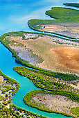 Côte Ouest, mangrove