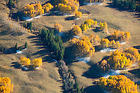 Fall colors northeast of Gunnison, Colorado. Oct 5, 2013