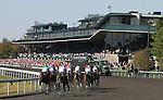 Keeneland 5th race.  October 12, 2012