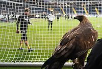 Eintracht Maskottchen Attila - 12.03.2020: Eintracht Frankfurt vs. FC Basel, UEFA Europa League, Achtelfinale, Commerzbank Arena<br /> DISCLAIMER: DFL regulations prohibit any use of photographs as image sequences and/or quasi-video.