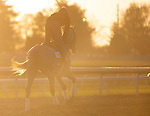 November 3, 2020: Harvey'S Lil Goil, trained by trainer William I. Mott, exercises in preparation for the Breeders' Cup Filly & Mare Turf at Keeneland Racetrack in Lexington, Kentucky on November 3, 2020. Carolyn Simancik/Eclipse Sportswire/Breeders Cup