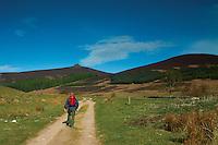 Ascending Clachnaben, Aberdeenshire