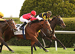 02 April 2010. Nordic Truce and Julien Leparoux come from between horses to win the 22nd running of the Transylvania (GRIII)