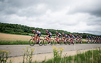 the Team Lotto-Soudal train<br /> <br /> the inaugural GP Vermarc 2020 is the very first pro cycling race in Belgium after the covid19 lockdown of Spring 2020 & which was only set up some weeks in advance to accommodate belgian teams by providing racing opportunities asap after the lockdown allowed for racing to restart (but still under strict quarantine / social distancing measures for the public, riders & press)<br /> <br /> Rotselaar (BEL), 5 july 2020<br /> ©kramon