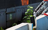 Weeds grow behind the advertising boards inside Elland Road<br /> <br /> Photographer Alex Dodd/CameraSport<br /> <br /> The EFL Sky Bet Championship - Leeds United v Fulham - Wednesday 24th June 2020 - Elland Road - Leeds<br /> <br /> World Copyright © 2020 CameraSport. All rights reserved. 43 Linden Ave. Countesthorpe. Leicester. England. LE8 5PG - Tel: +44 (0) 116 277 4147 - admin@camerasport.com - www.camerasport.com<br /> <br /> Photographer Alex Dodd/CameraSport<br /> <br /> The Premier League - Newcastle United v Aston Villa - Wednesday 24th June 2020 - St James' Park - Newcastle <br /> <br /> World Copyright © 2020 CameraSport. All rights reserved. 43 Linden Ave. Countesthorpe. Leicester. England. LE8 5PG - Tel: +44 (0) 116 277 4147 - admin@camerasport.com - www.camerasport.com