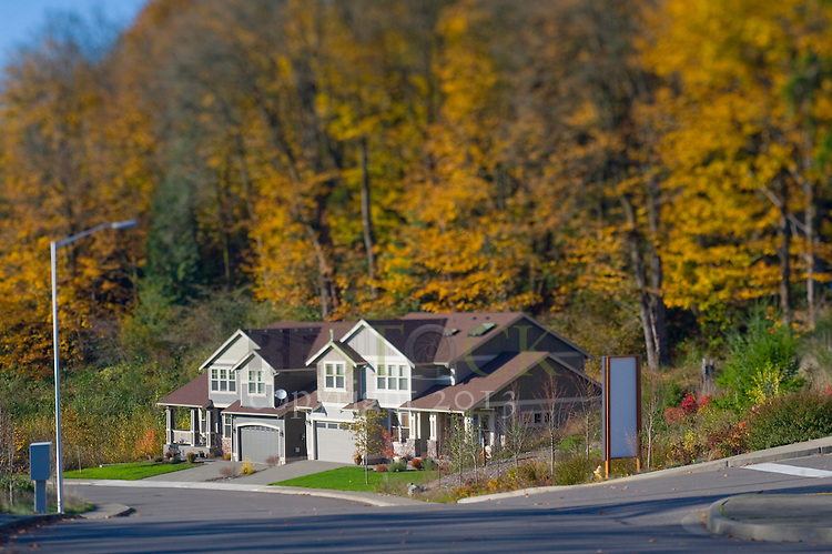 Two Homes in Autumn