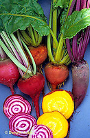 HS62-026x  Beet - Mixed beets - Foranova, Golden, and Chioggia varieties