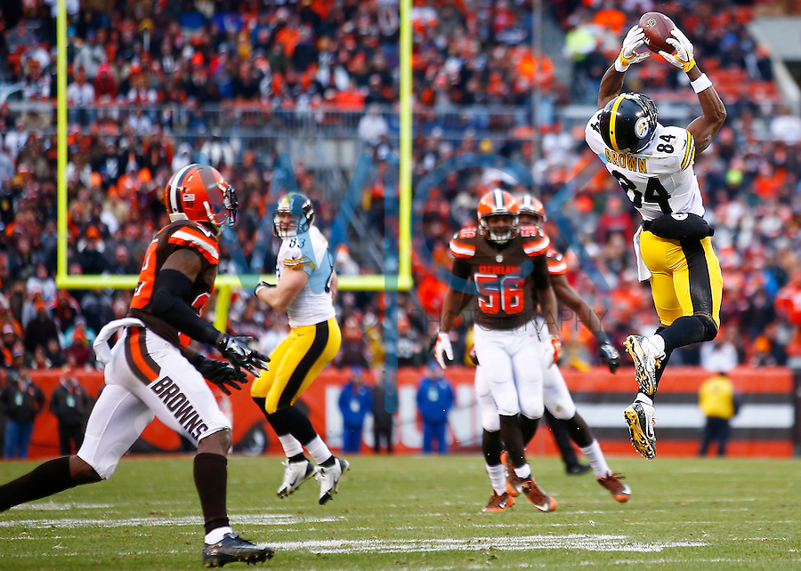 Antonio Brown #84 of the Pittsburgh Steelers makes a catch against the Cleveland Browns in the second half during the game at FirstEnergy Stadium on January 3, 2016 in Cleveland, Ohio. (Photo by Jared Wickerham/DKPittsburghSports)