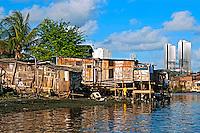 Palafitas na Favela e Rio Capibaribe em Recife. Pernambuco.2015. Foto de Joao Urban.
