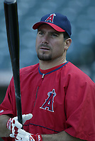 Benji Gil of the Anaheim Angels during a 2003 season MLB game at Angel Stadium in Anaheim, California. (Larry Goren/Four Seam Images)