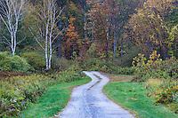 Unpaved rural road.