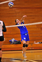 28 October 2012: Yeshiva University Maccabee setter Shana Wolfstein, a Sophomore from Burlington, VT, in action against the Farmingdale State College Rams at SUNY Old Westbury in Old Westbury, NY. The Rams defeated the Maccabees 3-0 in NCAA women's volleyball play. Mandatory Credit: Ed Wolfstein Photo