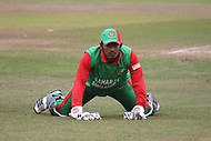 Lions v Bangladesh 2nd ODI