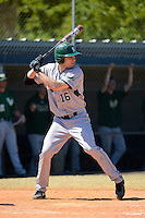 Slippery Rock outfielder Graeme Zaparzynski (16) during a game against the Wayne State Warriors on March 15, 2013 at Chain of Lakes Park in Winter Haven, Florida.  (Mike Janes/Four Seam Images)