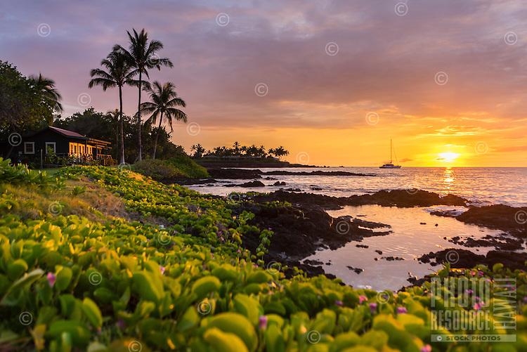Sunset at Makaiwa Bay, with naupaka, tide pools, palm trees and a sailboat, Big Island.