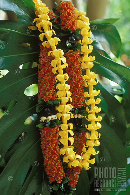 "Puakenikeni and """"firecracker"""" lei with kukui nut and ti leaf, a beautiful and fragrant Hawaiian tradition"