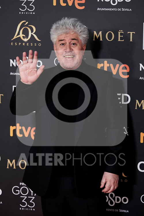 Pedro Almodovar attends to 33rd Goya Awards at Fibes - Conference and Exhibition  in Seville, Spain. February 02, 2019. (ALTERPHOTOS/A. Perez Meca)