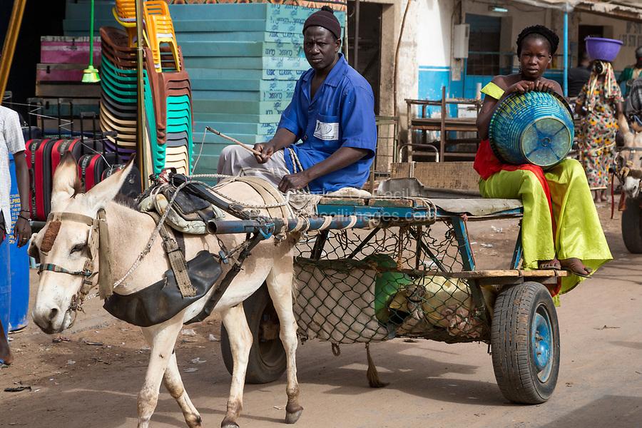 Senegal, Touba.  Donkey-drawn Carts Provide Taxi Service for Market Shoppers.