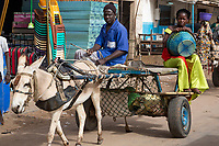 Senegal, Touba.  Donkey-drawn Carts Provide Taxi Service for Market Shoppers.