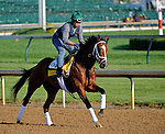 29 April 10: Discreetly Mine works out at Churchill Downs in Louisville, Kentucky