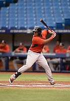 Boston Red Sox third baseman Rafael Devers (12) at bat during an Instructional League game against the Tampa Bay Rays on September 25, 2014 at the Tropicana Field in St. Petersburg, Florida.  (Mike Janes/Four Seam Images)