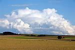Deutschland, Freistaat Sachsen, Saechsische Schweiz, landwirtschaftlich genutzte Flaechen bei Koenigstein | Germany, the Free State of Saxony, Saxon Switzerland, agriculturally used area near Koenigstein