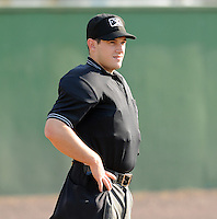 Umpire Rich Gonzalez works a game between the Salem Red Sox and the Potomac Nationals on June 8, 2012, at Pfitzner Stadium in Woodbridge, Virginia. (Tom Priddy/Four Seam Images)