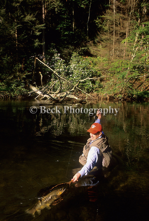 Jim Wood landing  brown trout in northeast PA