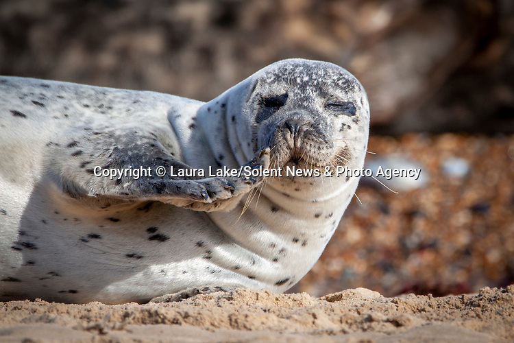 SSSHHHHH!!! My lips are sealed!<br />