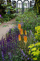 Perennial border with purple blue salvia and orange kniphofia along path leading to garden gate in California coastal garden