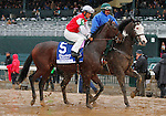 October 13, 2015:  Ma Can Do It, post parade for the Alcibiades Stakes at Keeneland on 10/02/15.  Candice Chavez/ESW/CSM