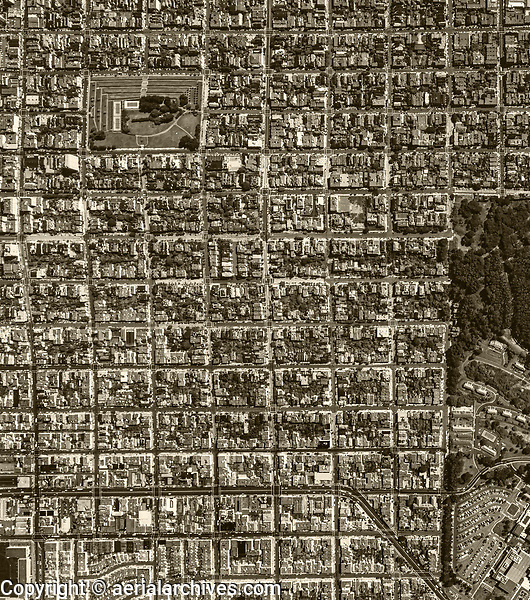historical aerial photograph of Pacific Heights, San Francisco, California, 1982