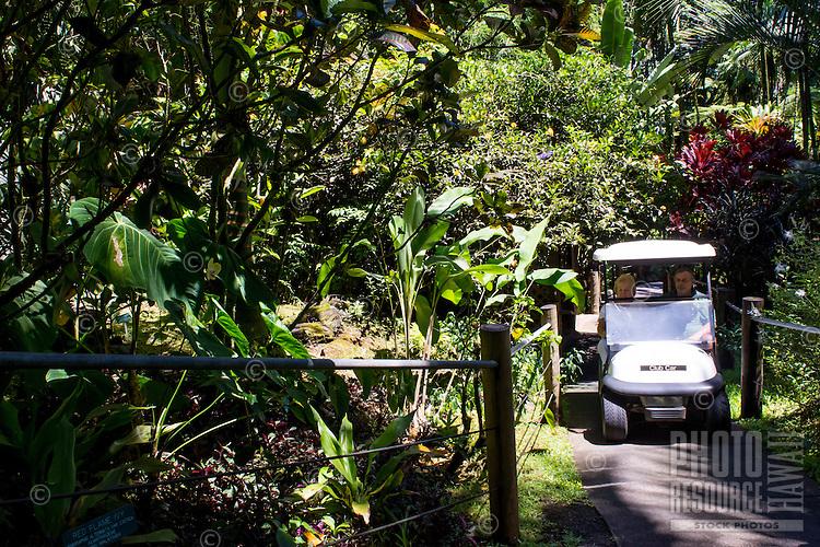 A tourist gets a ride via golf cart at the Hawaii Tropical Botanical Garden in Papa'ikou north of Hilo, Big Island of Hawaiʻi.