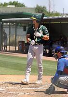 Drew Millas - Oakland Athletics 2021 spring training (Bill Mitchell)