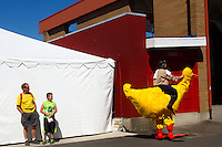A large chicken strolls the grounds at the Washington State Spring Fair in Puyallup, Washington on April 16, 2015.