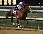 Shackleford (by Forestry), Jesus Castanon up, wins the Clark H. for owners Mike Lauffer and Bill Cubbedge and trainer Dale Romans.November 23, 2012