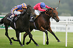 Horse Racing - Leopardstown Racecourse - Matron Stakes.The Aidan O'Brien trained Lillie Langtry with Johnny Murtagh aboard just get the better of Kieran Fallon aboard Spacious to win the The Coolmore Fusaichi Pegasus Matron Stakes at Leopardstown Racecourse in Dublin.