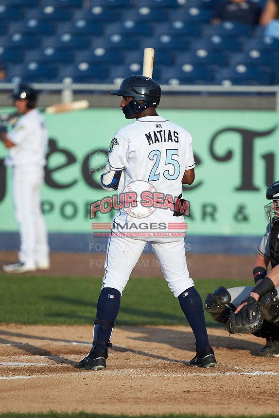 Seuly Matias (25) of the Wilmington Blue Rocks at bat against the Fayetteville Woodpeckers at Frawley Stadium on June 6, 2019 in Wilmington, Delaware. The Woodpeckers defeated the Blue Rocks 8-1. (Brian Westerholt/Four Seam Images)
